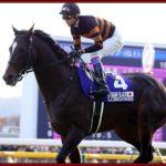キタサンブラック 種牡馬 成功 価値